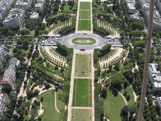 Parigi di branca