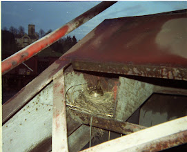 Photo: A resident of the old crane used for unloading coal (1969)