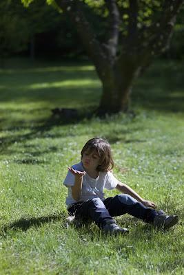 lui, il vento e la primavera di Lucabanchini