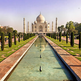Taj Mahal by Amit Aggarwal - Buildings & Architecture Public & Historical (  )