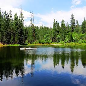 Pond reflection by Janet Martinez - Novices Only Landscapes ( mountains, reflection, pond )