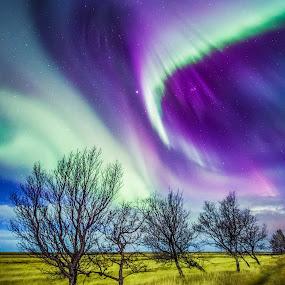 Icelandic Aurora by Derek Kind - Landscapes Starscapes ( icelandic, iceland, aurorae, aurora, aurora borealis, northern lights, 2012, derek kind, island )