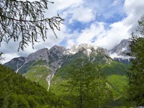 Photo: Blick nach oben. Die Auffahrt im unteren Teil geht durch den Wald und lässt nur selten solche Blicke frei.
