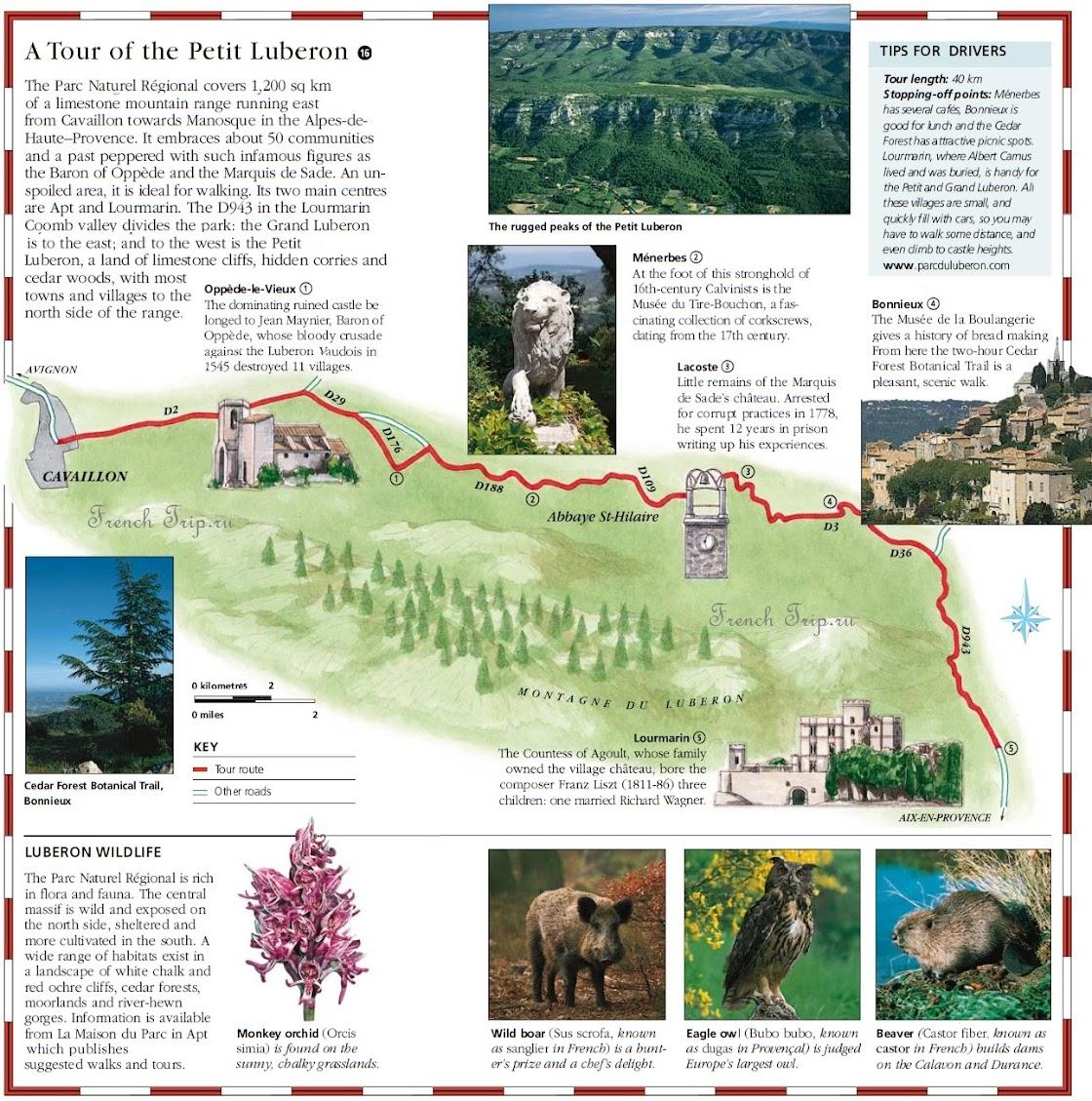 Petit Provence: 2 - 3 дня
