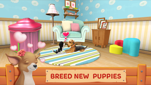 Download Dog Town: Pet Shop Game, Care & Play with Dog 1.3.44 2