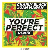 You're Perfect (Remix)