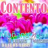 com.myDestiny.Quotes.es3_BuenosDias_Tarde_CitasDeseosNocturnos