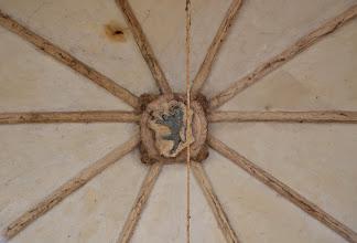 Photo: La chiave di volta del protiro rappresenta il leone rampante, stemma dei Pelletta