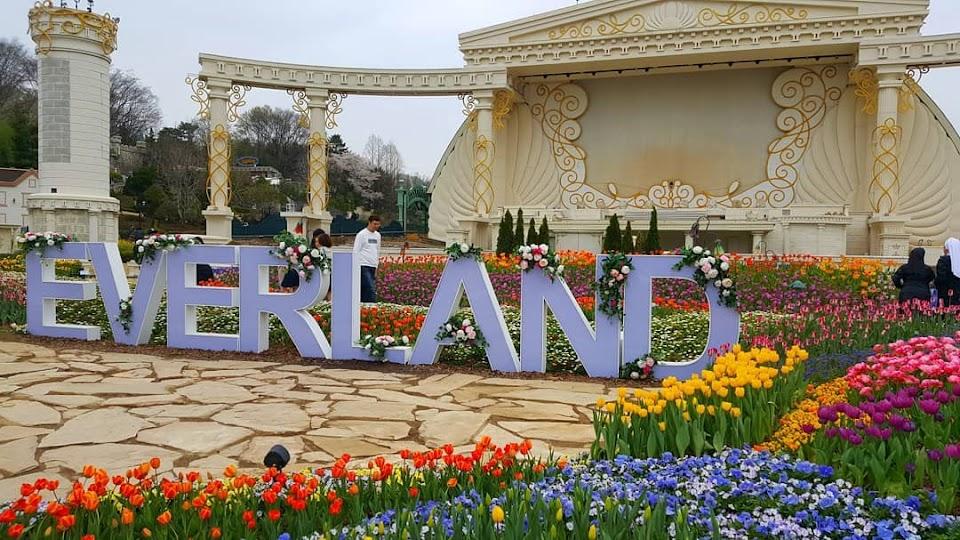 Everland Tulip Fest