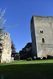 château à Saint-Capraise-de-Lalinde (24)