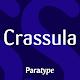 Crassula Latin and Cyrillic FlipFont Download on Windows