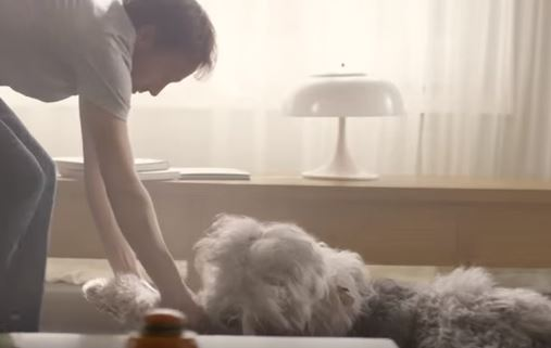 A screengrab from the Voltaren Emulgel advert showing a man dragging a dog by its front paws across the floor.