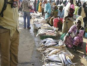 Photo: Nouakchott - targ rybny w porcie