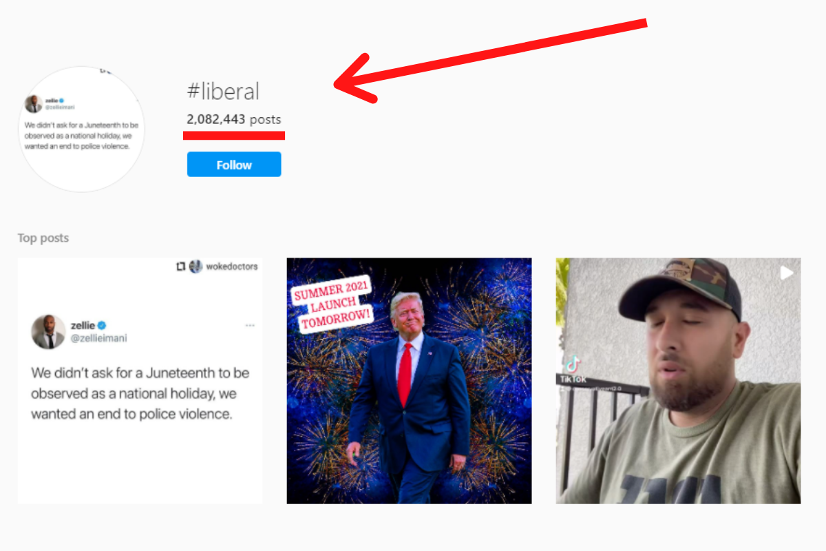 An example of how you can find voter email addresses based on the hashtag liberal.