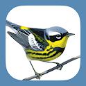 Sibley Birds 2nd Edition icon