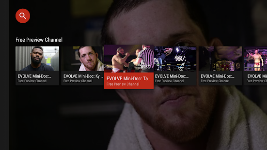 World Wrestling Network- screenshot thumbnail