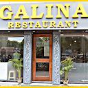 Galina Restaurant, Gole Market, New Delhi logo