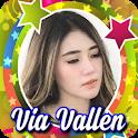 Salah Apa Aku - Via Vallen Offline icon