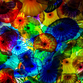 Glass Roof by Jay Woolwine Photography - Artistic Objects Glass ( artistic glass, las vegas )