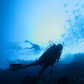 Two Divers by Steven Tessy - Landscapes Underwater ( underwater )