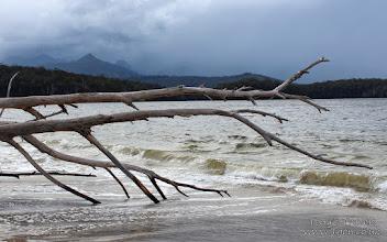 Photo: Cockle Creek, Tasmania