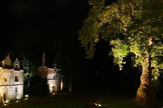 Photo: Illuminations Manoir, Poterne, Platane d'Orient