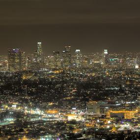 Los Angeles Vista by Kim Wilson - City,  Street & Park  Skylines ( skyline, streets. view, ca, exterior, cityscape, travel, landscape, usa, city, lights, landmark, vista, outdoors, grid, los angeles, night, outside )
