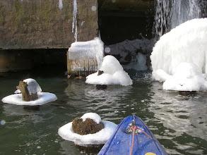 Photo: grzybki lodowo-śnieżne