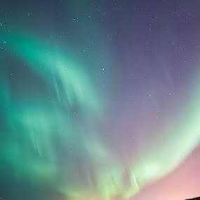 Dancing lights by Stefán Margrétarson - Landscapes Starscapes ( iceland, europe, hafnarfjörður, night, evening )