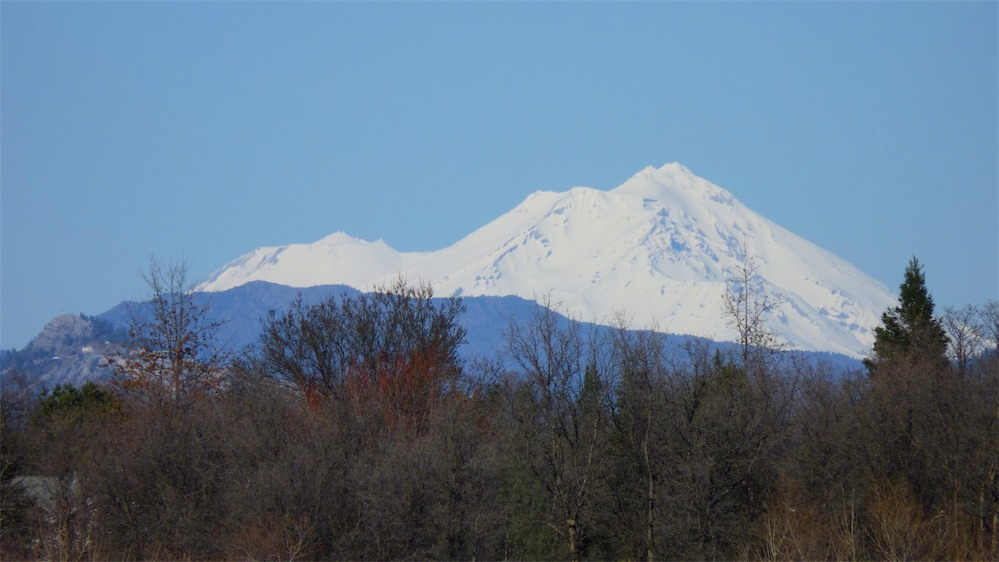 Shasta Review 3.jpg