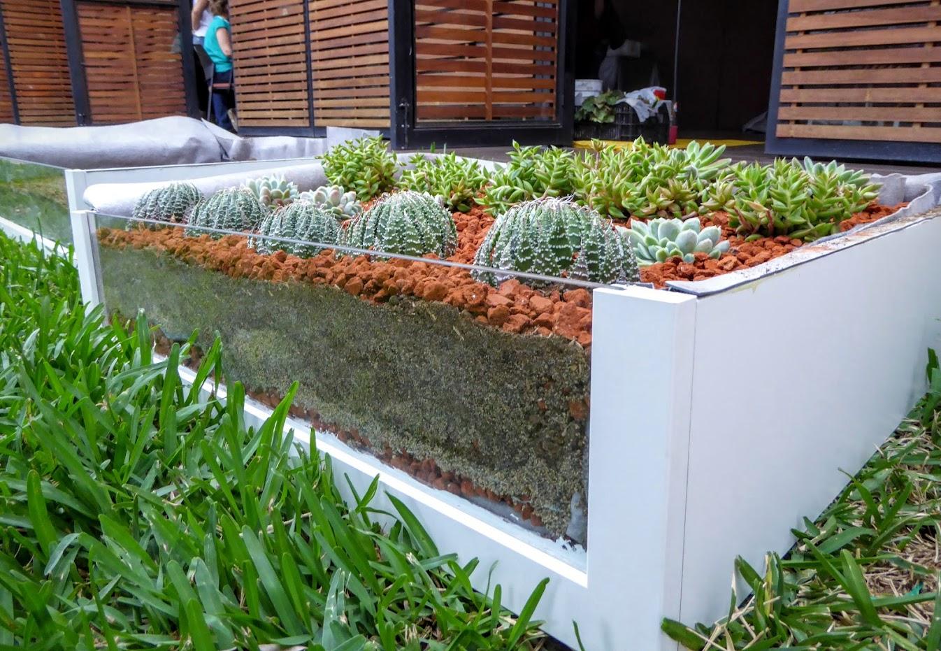 Curso de techos verdes en Medellín