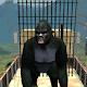 Real Gorilla Simulator APK