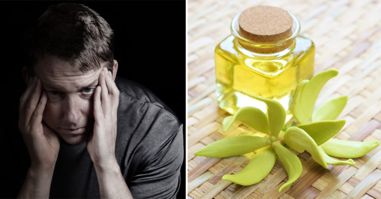Ylang Ylang Essential Oil: 7 Health Benefits
