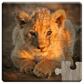 Animal Babies Jigsaw Puzzles