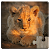 Animal Babies Jigsaw Puzzles Game - Kids & Adults file APK Free for PC, smart TV Download