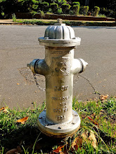 Photo: Here's one I saw in Atlanta last weekend for#firehydrantfriday