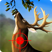 Jungle Deer Hunting Game