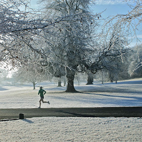 Winter Run by Oona Tully - Landscapes Weather ( jog, ireland, frost, runner, landscape, run, jogger )