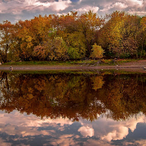 River Reflections by Thomas Jones - Landscapes Waterscapes ( minnesota, mississippiriver, autumn, waterscape, reflections )