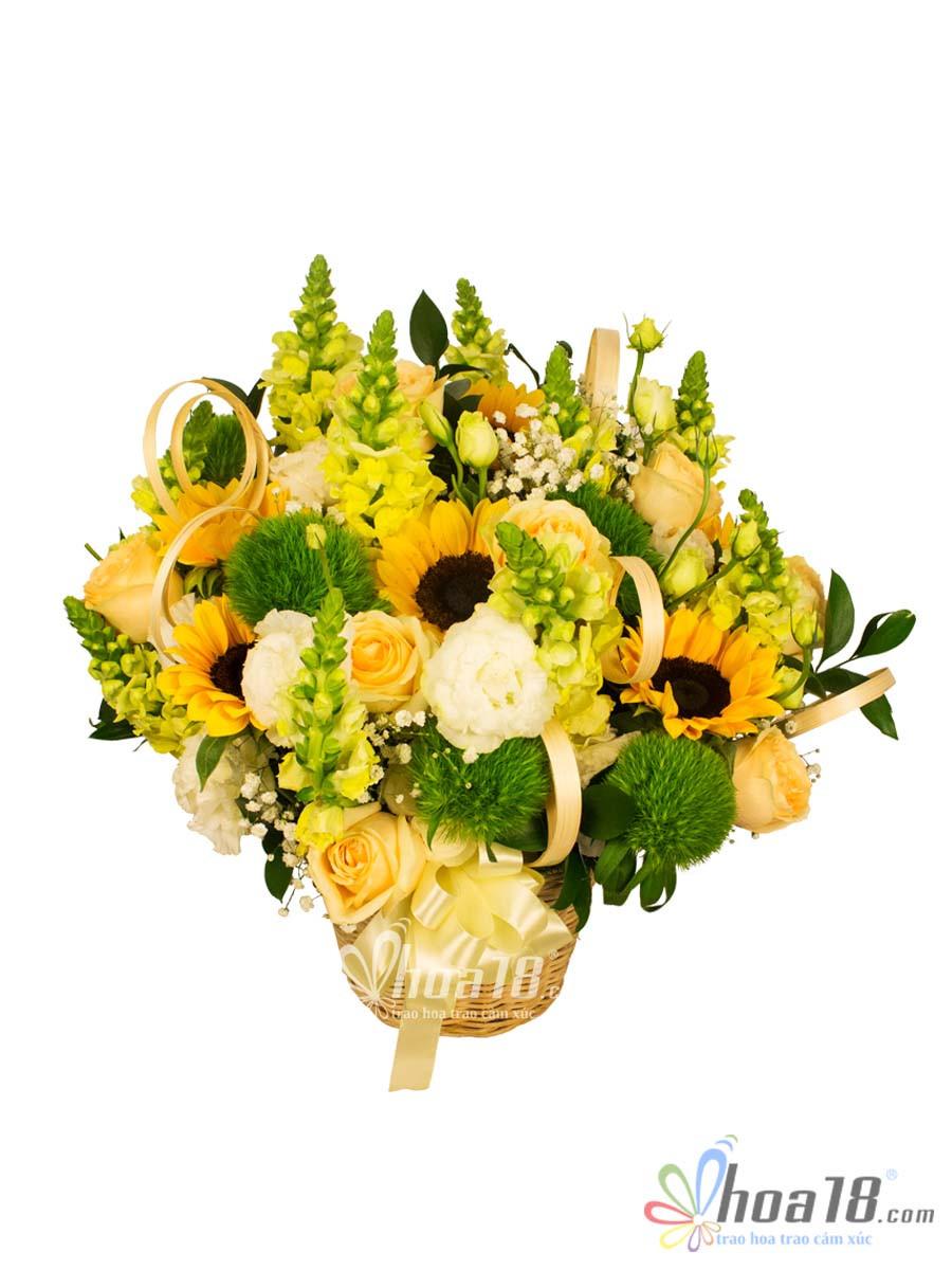 giỏ hoa ngày thầy thuốc đẹp