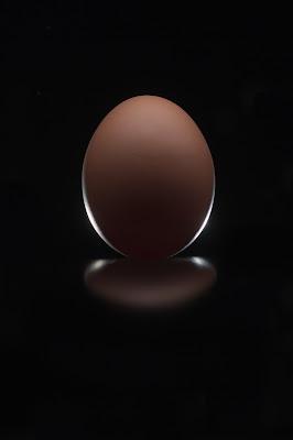 ..Egg... di Alessandro Alessandri
