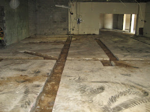 Photo: Cut outs of Concrete for new dental suites
