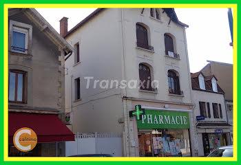 locaux professionels à Puy-Guillaume (63)