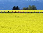 Er wachten opnieuw enkele beklimmingen in de Ronde van Romandië: tonen klassementsrenners zich?