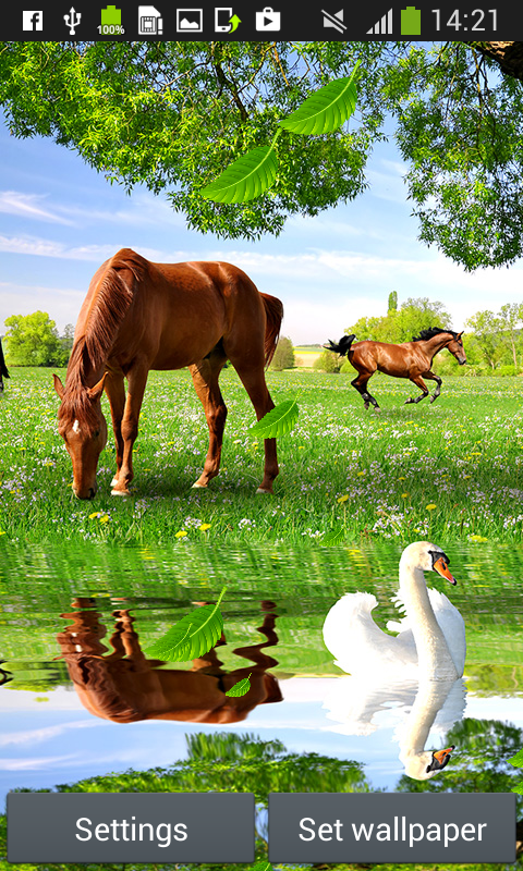 horses live wallpapers android apps on google play