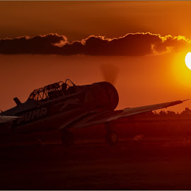 Into the sun by Hannes Kruger - Transportation Airplanes ( airshow, airplane, sunset, take off, harvard )
