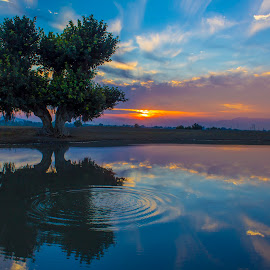 by Umair Khan - Landscapes Sunsets & Sunrises ( reflection, reflections, mirror )