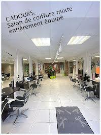 locaux professionels à Cadours (31)