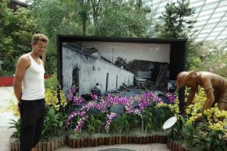 Photo: Visite du Flower park