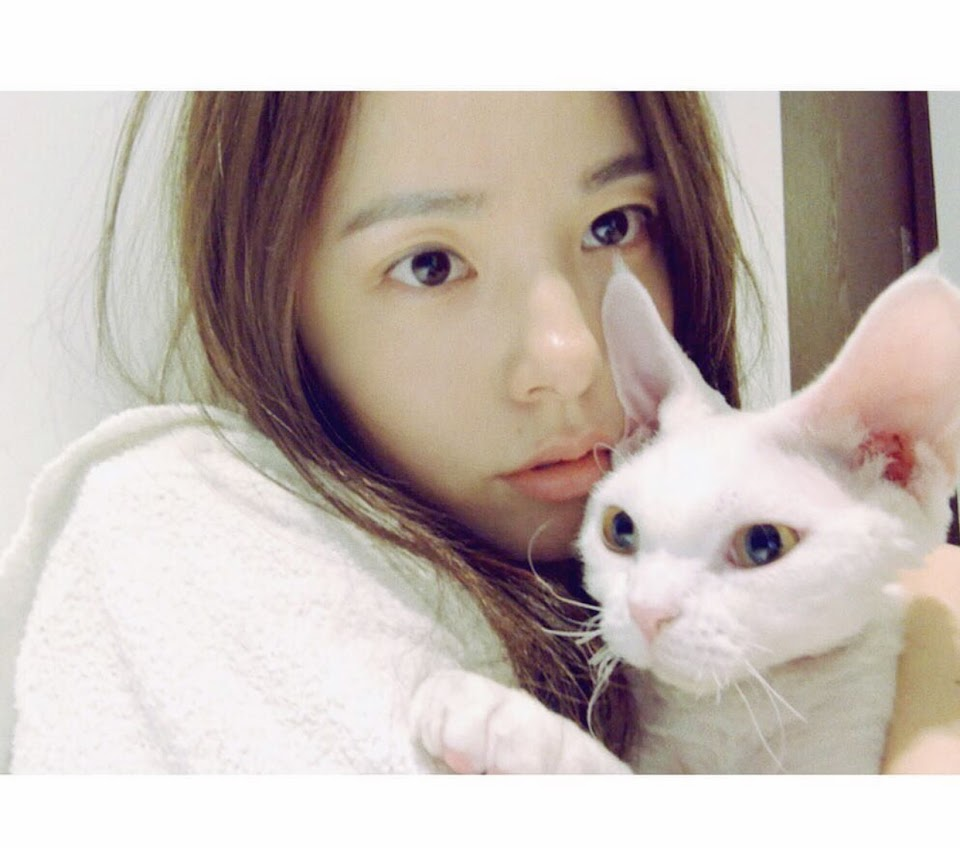 min hyorin cat